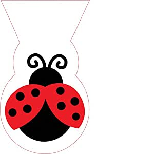 12-Count Cello Party Loot Bags, Ladybug Fancy