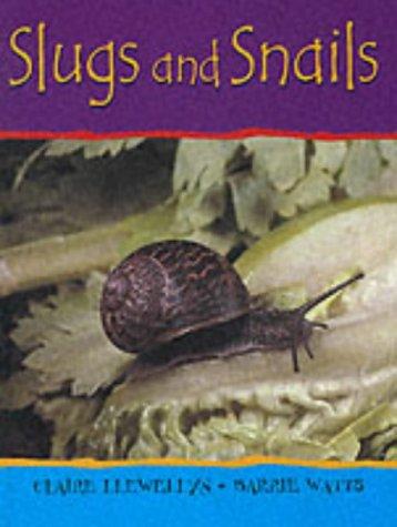 Slugs and Snails (Minibeasts) pdf epub