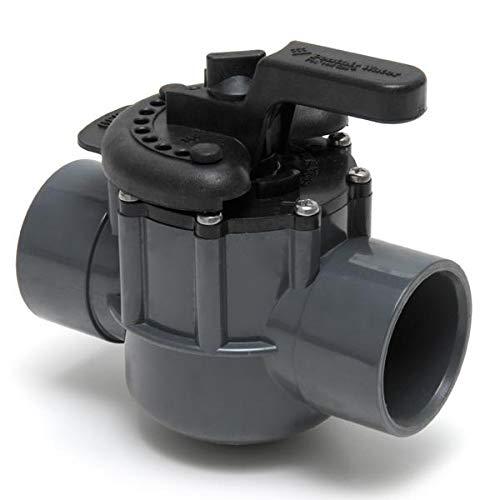 Pentair 263029  Grey/Black Diverter Valve 2-Way 2-Inch (2-1/2-Inch Slip Outside), PVC, Grey/Black
