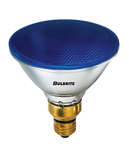 Bulbrite 683903 H90PAR38B 90 Watt PAR38 Halogen, Blue, Medium base, 120 volts (Pack of 8) by Bulbrite
