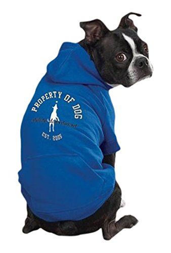 Dog Is Good Solid Hoodie, Small Medium, Sky Diver bluee