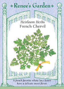 Chervil - French Seeds