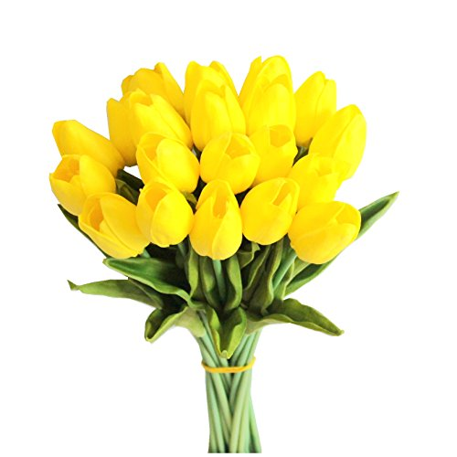 Mandy's Yellow tulip 14