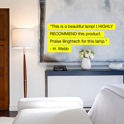 Brightech Lucas Floor Living Room Beside Sofa & In - Standing Shade Lighting