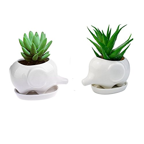 Cheap Koreyoshi 2 Pcs 4 inches Elephant Plant Window Boxes with Tray Cute Elephant Flower Pot,Modern White Ceramic Succulent Planter Pots/Tiny Flower Plant Containers (Style 7) free shipping