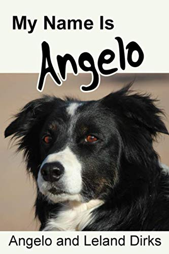 My Name Is Angelo: One Border Collie's Walking Memoir and Photo Album