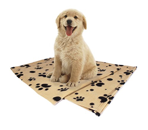 Pet Blanket, Large (60