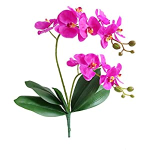Jasming Artificial Phaleanopsis Flowers Fake Orchids Leaves Branches for Home Bonsai Garden Decoration (Purple)
