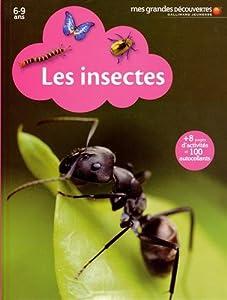 """Afficher """"Les insectes"""""""