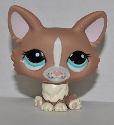 Corgi Toy Collectors (Corgi #1864 - Littlest Pet Shop (Retired) Collector Toy - LPS Collectible Replacement Single Figure - Loose (OOP Out of Package & Print))