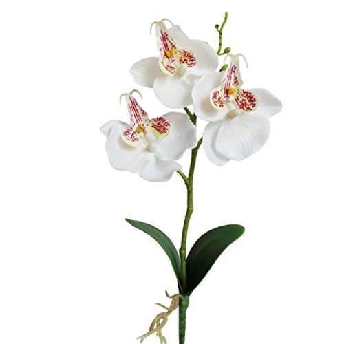 Drfoytg Prime Sale! Silk Flowers, Home Decor Triple Head Artificial Butterfly Orchid Flower Wedding Decor Fake Bouquet 25cm (White, 25cm) -