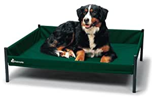 Petmate Durabed Elevated Pet Bed  Large, Forest Green