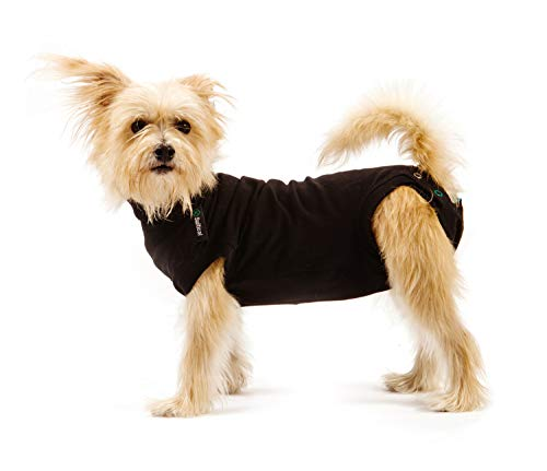 Suitical Recovery Suit Dog, XX-Small, Black (Body Suit For Dogs)