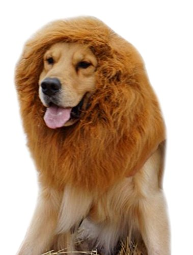 TAUT Pet Large Dog Costume Lion Mane Wig Hair Festival Fancy Dress up (Dress Up Dogs)