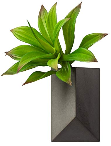 - hrubie Modern Geometric Wall Hanging Vase | Gray Cement/Concrete Planter Pot Ideal for Succulents or Cactus | Indoor/Outdoor, Mounting Hardware Included