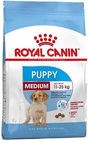 ROYAL CANIN - Medium Junior pienso Perros Raza Mediana ...