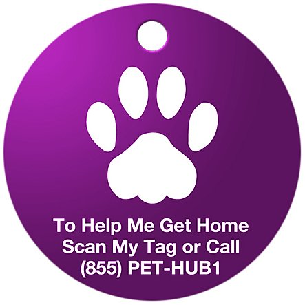 PetHub Basic QR ID Tag, Small, Purple, My Pet Supplies
