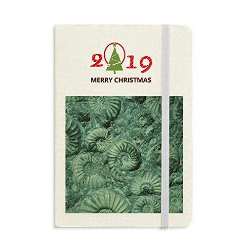Nautilus Ammonites Fossils Specimen Notebook Journal Diary 2019 New Year