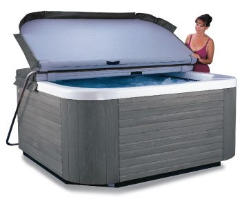D1 E-Z Spa Cover Lift for sale  Delivered anywhere in USA