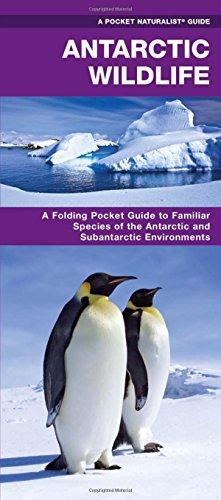 Antarctic Wildlife: A Folding Pocket Guide to Familiar Species of the Antarctic and Subantarctic Environments (Pocket Naturalist Guide Series)