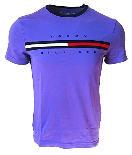 Tommy Hilfiger Men Classic Fit Big Logo T-Shirt (Small, Purple)