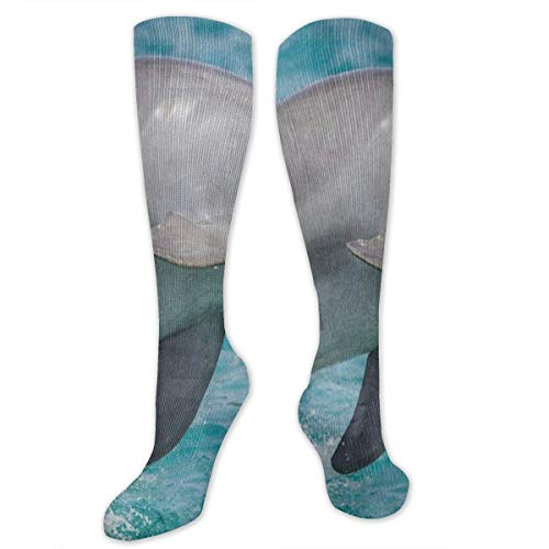 (Socks Hipster Dolphin Fish Water Ocean Sea Vintage Womens Stocking Holiday Sock Clearance for Girls)