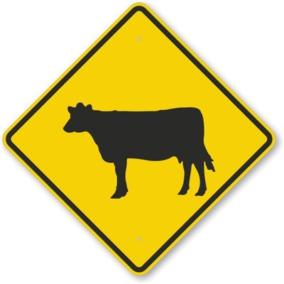 Cattle Symbol, Fluorescent Yellow Diamond Grade Reflective Aluminum Sign, 30'' x 30'' by RoadTrafficSigns