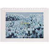 東山魁夷カレンダー2019 残しておきたい京都 ([カレンダー])