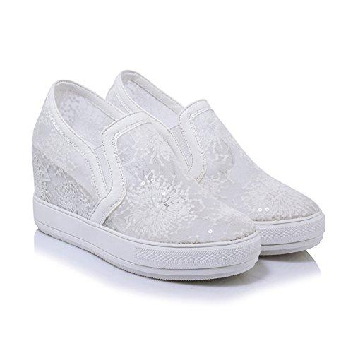 Zapatos De Los Deportes Respirable/Zapatos De Plataforma Alta Del/Versión Coreana De Zapatos De Tacón Alto B
