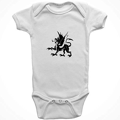 Medievil Dragon Onesie Baby Clothes Jumper (White, 24 Month) b10076