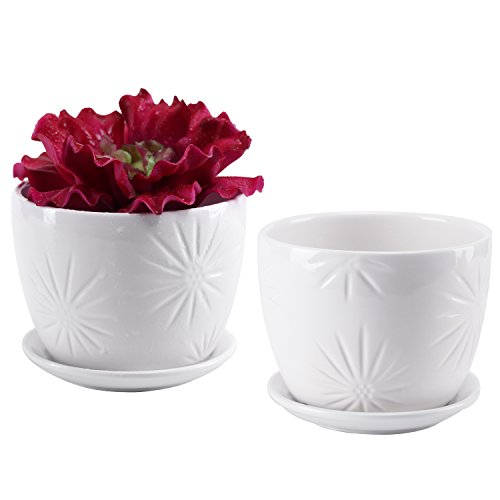 Planter Bench Set (Set of 2 White Starburst Design Ceramic Flower Planter Pots / Decorative Plant Containers with Saucers)