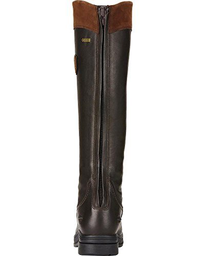 Brown Pro Insulated Coniston GTX Brown Ebony Boot Womens Ariat xZw0q7RR