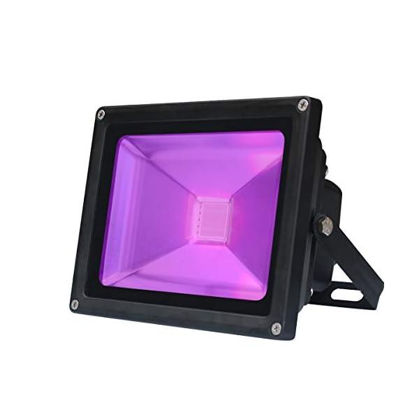 41X2oXqbpoL. SS600 - UV Schwarzlicht,20W Violettes LED Stadiums Dekoratives Licht,Wechselstrom 85-265V IP65 Imprägniern UV-A Niveau 395-400nm Wellenlängen Flut-Licht für Party Leistung