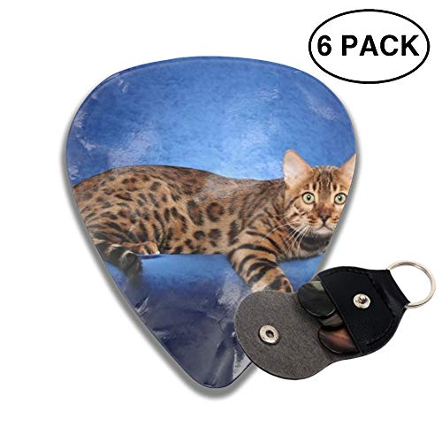 Beautiful Bengal Cat On A Blue Background Guitar Picks 3 D Print Custom 6-Pack with a pocket