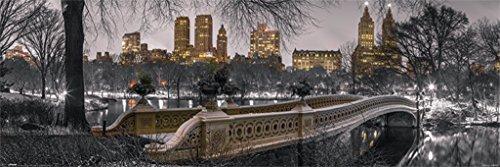 Pyramid America New York City NYC Central Park Bow Bridge Panoramic Winter Photo Poster 36x12 inch