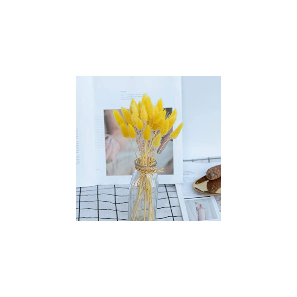 20Pcs/Lot Natural Dried Flowers Colorful Lagurus Ovatus Real Flower Bouquet for Home Wedding Decoration Rabbit Tail Grass Bunch,3