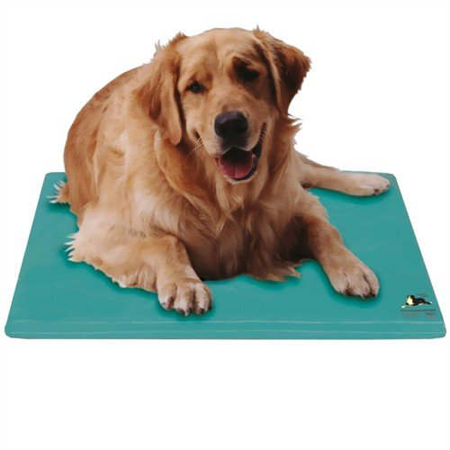 Canine Cooler Cooling Pet Bed and Cool Relief Therapy Pad, S