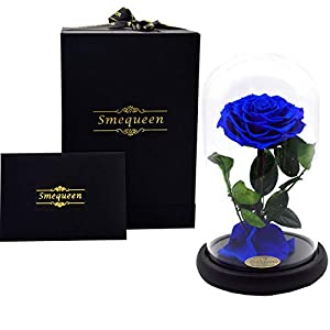 Smequeen Women Handmade Preserved Rose Never Withered Roses Flower in Glass Dome, Gift for Valentine's Day Anniversary Birthday 10