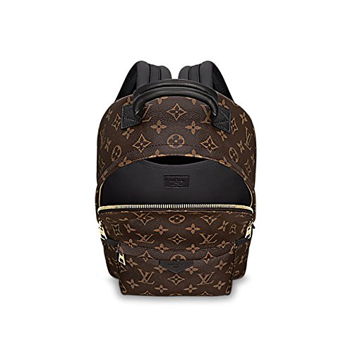 c7ef212306b3 Authentic Louis Vuitton Monogram Canvas Palm Springs Backpack PM Handbag  Article  M41560 Made in France