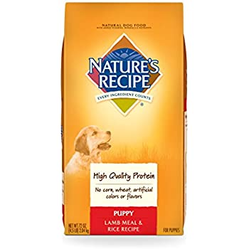 Natures Recipe Dog Food Made In Usa