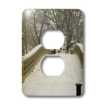 3dRose lsp_10313_6 Snow Blizzard in Central Park Manhattan New York City 2 Plug Outlet - Park Outlet City