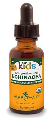 Herb Pharm Kids Certified-Organic Alcohol-Free Echinacea Glycerite Liquid Extract, 1 Ounce