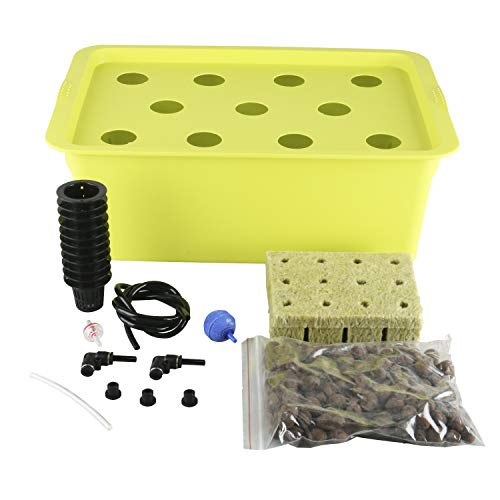 Homend DWC Deep Water Culture Hydroponic System Growing Kit, Medium Size w/Airstone, 11 Plant Sites (Holes) Bucket, Air Pump, Rockwool - Best Indoor Herb Garden for Lettuce, Mint, Parsley (11 Sites)