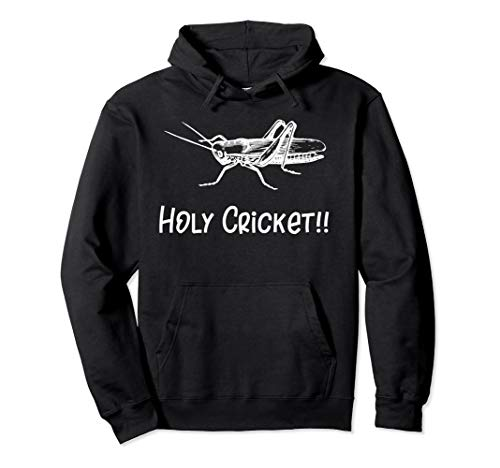 Holy Cricket Novelty Gift Bug Lovers Insect Graphic Hoodie