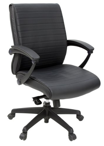 (Regency Seating Evolve Low Back Vinyl Executive Office Chair)