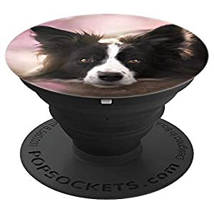 Border collie Dog - Border Collie Mom owner Birthday Gift PopSockets Grip and Stand for Phones and Tablets 1