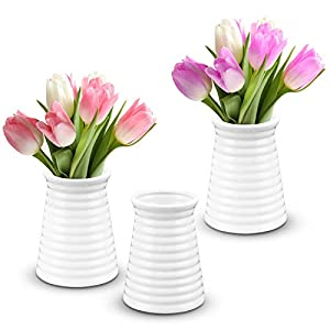 41X3ibE5bHL._SS300_ Beach Vases & Coastal Vases
