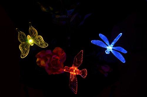 Solar Hummingbird Garden (Solaration 1004S Solar Garden Stake Lights with Hummingbird, Dragonfly and)