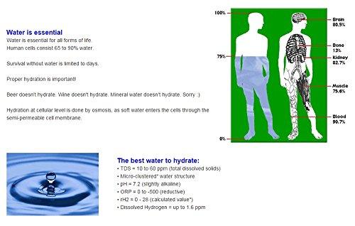 Hydrogen Rich Water Generator - Drinking Hydrogen Water Antioxidant Health Benefits Hydrogenated Water by Medicomat (Image #5)'