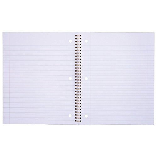 Mead Spiral Notebooks, 1 Subject, College Ruled Paper, 100 Sheets, Modern Chic, 3 Pack (38196)
